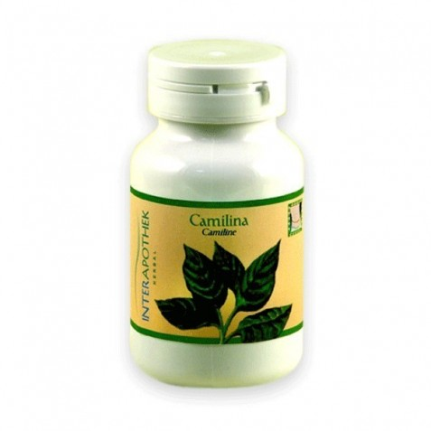 Camilina 80 Caps 600 Mg Interapothek